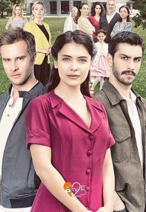 مسلسل قلبي الحلقة 15 مترجم للعربية